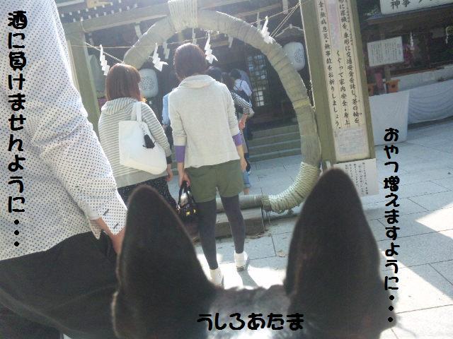 ★鎌倉&江の島散策★_d0187891_1052130.jpg