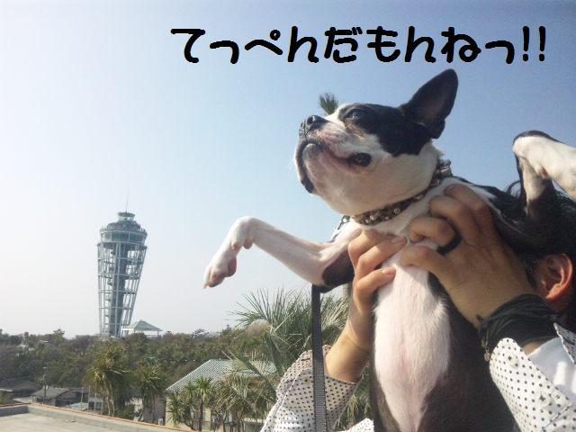 ★鎌倉&江の島散策★_d0187891_1052925.jpg