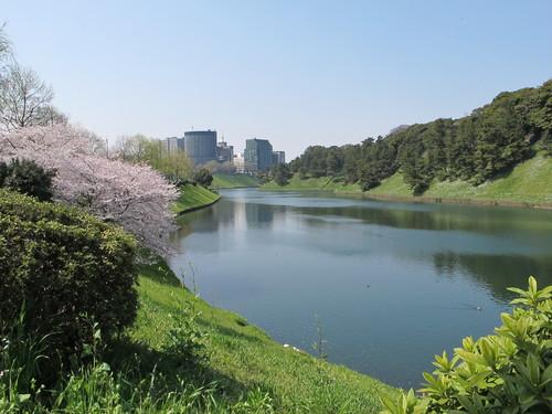 皇居外苑の桜&景色・・・2_c0075701_19243093.jpg