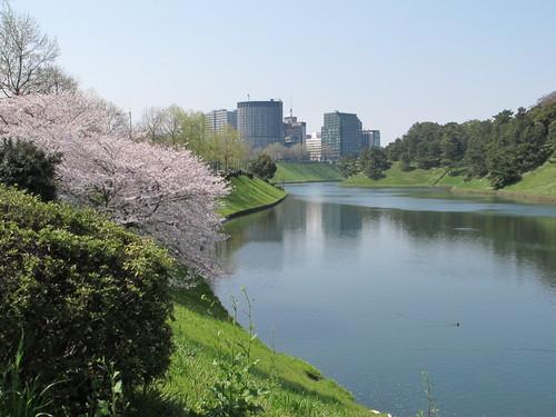 皇居外苑の桜&景色・・・2_c0075701_19243419.jpg