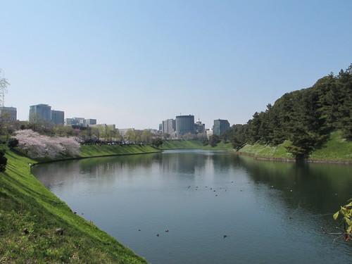 皇居外苑の桜&景色・・・2_c0075701_19243636.jpg