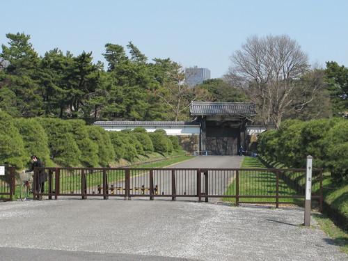 皇居外苑の桜&景色・・・5_c0075701_20184894.jpg