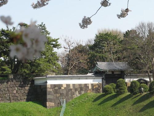 皇居外苑の桜&景色・・・7_c0075701_20362034.jpg