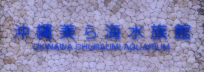 """沖縄 """"美ら海水族館"""" NO.4_a0140608_835494.jpg"""