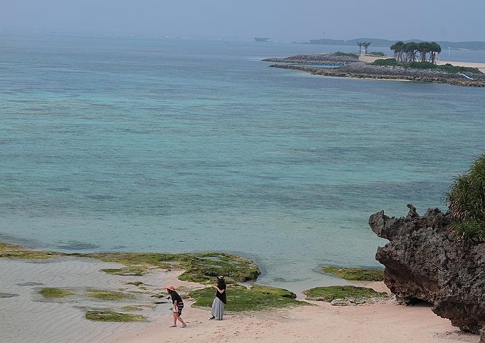 """沖縄 """"美ら海水族館"""" NO.4_a0140608_837335.jpg"""