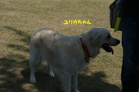 c0214455_148193.jpg