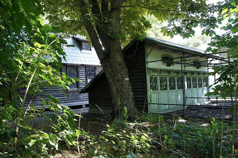北海道大学農学部植物園 事務所附属博物館鳥舎_c0112559_21141289.jpg