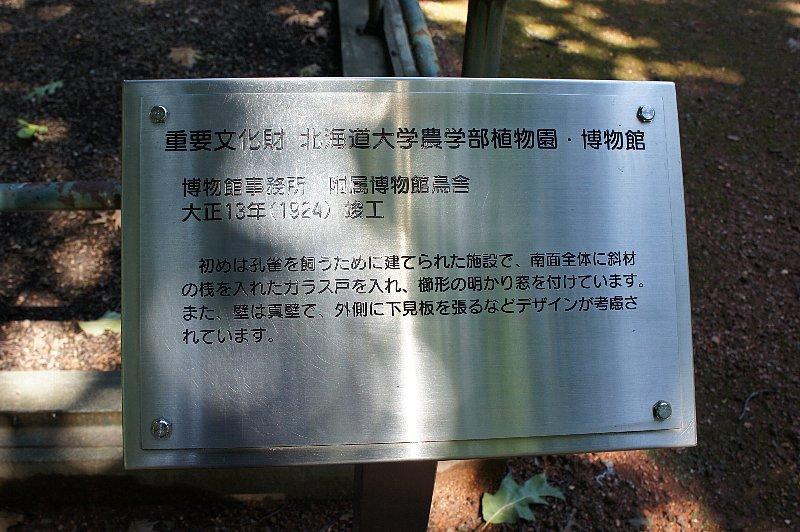 北海道大学農学部植物園 事務所附属博物館鳥舎_c0112559_21163631.jpg