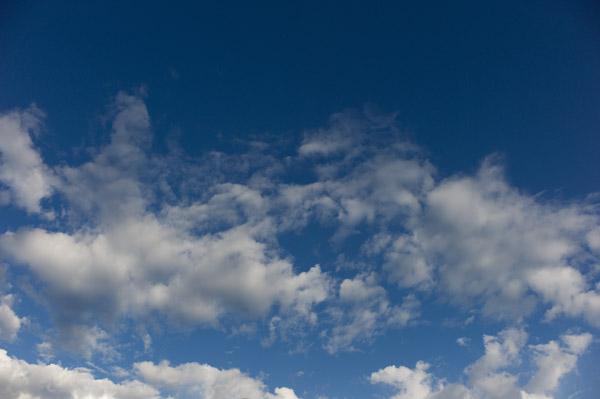 2012/05/05 散歩^〜`_b0171364_13114397.jpg