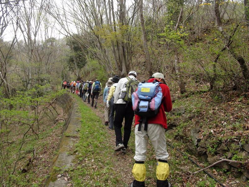 4月30日 旧十石街道〜カイト山ハイキング 開催しました。_b0209774_11131827.jpg