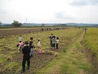 稲刈り体験(緑が丘小・北郷小)_d0247484_163079.jpg
