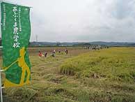 稲刈り体験(緑が丘小・北郷小)_d0247484_165248.jpg