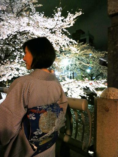 夜桜_c0224085_22485256.jpg