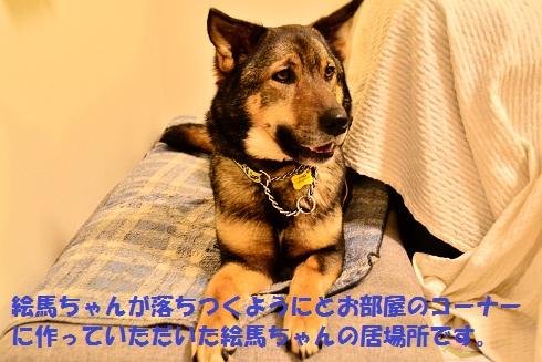 f0121712_17141825.jpg