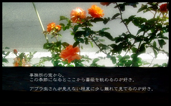 e0136420_1502911.jpg