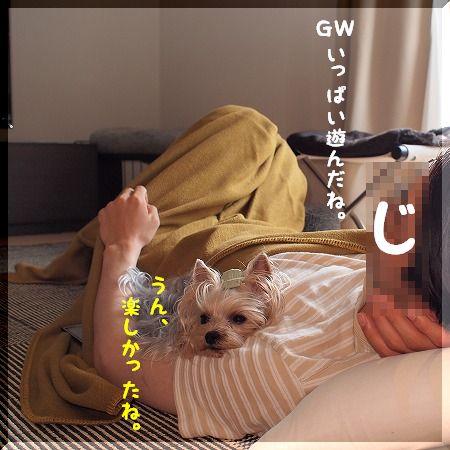 d0179828_1873521.jpg