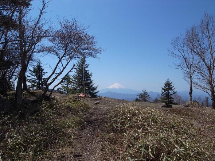 2012.5.5 小金沢連嶺を南下するデイハイク_b0219778_10341830.jpg