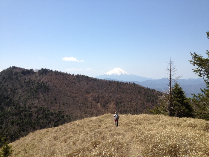 2012.5.5 小金沢連嶺を南下するデイハイク_b0219778_10545937.jpg