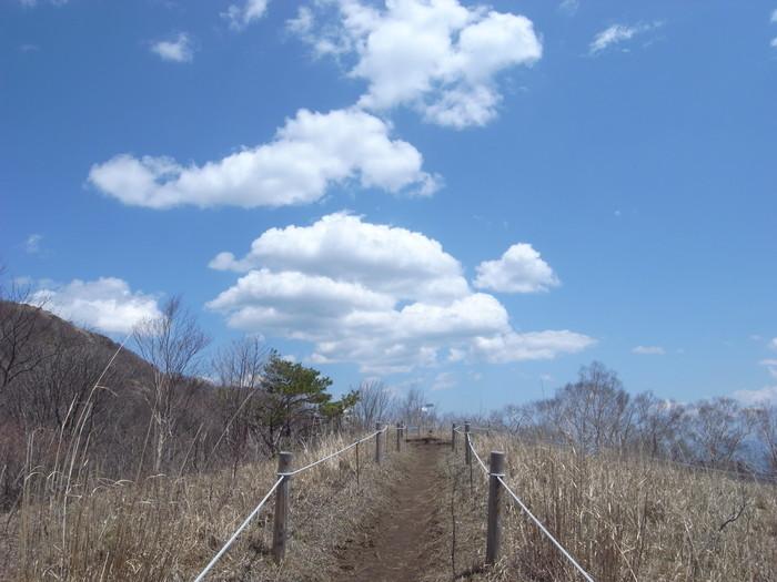 2012.5.5 小金沢連嶺を南下するデイハイク_b0219778_15102151.jpg