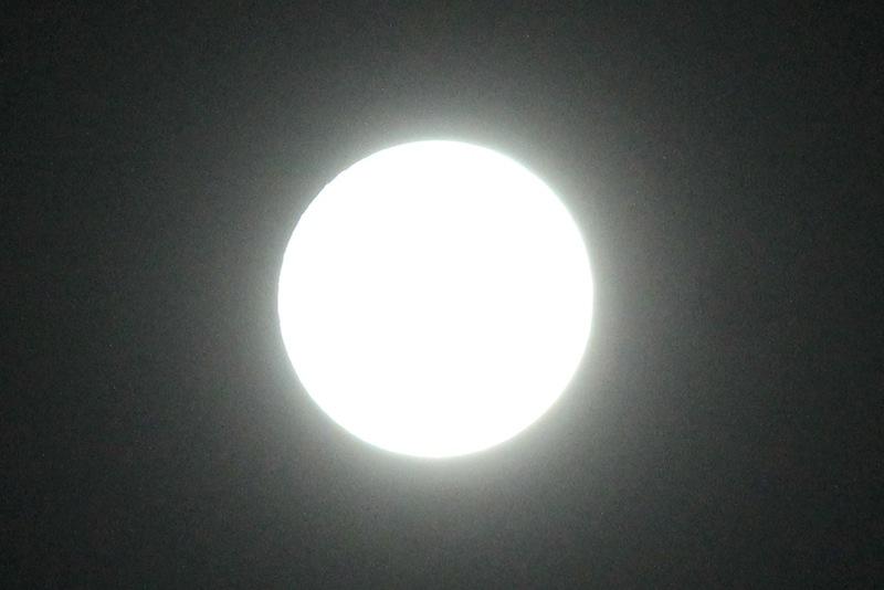 月と涙_c0173978_184088.jpg