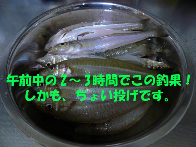 f0183484_23215340.jpg