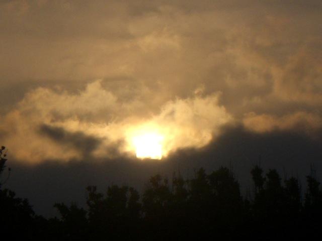 久高島より 「不動の太陽」_b0181015_1565054.jpg