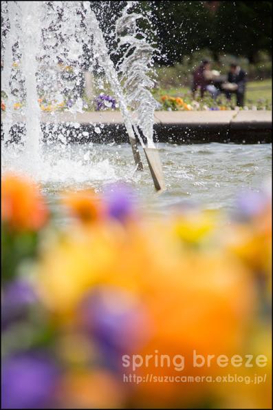春風をかんじて_f0100215_23234881.jpg