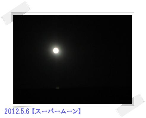 b0167519_939941.jpg