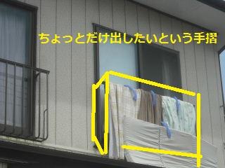 f0031037_20315566.jpg