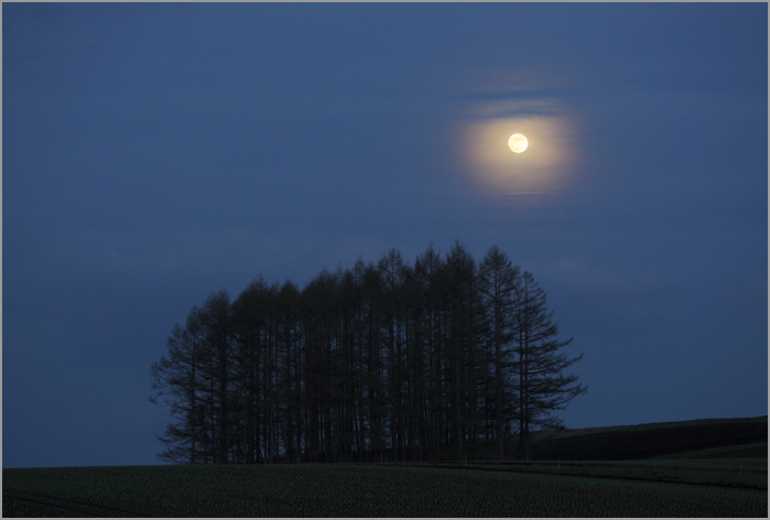 月夜に_d0101050_1523250.jpg