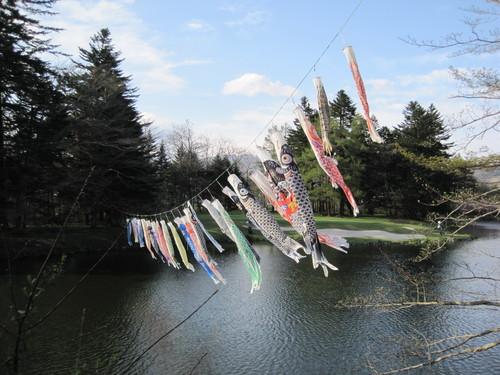 軽井沢の桜@連休最終日_f0236260_16454543.jpg