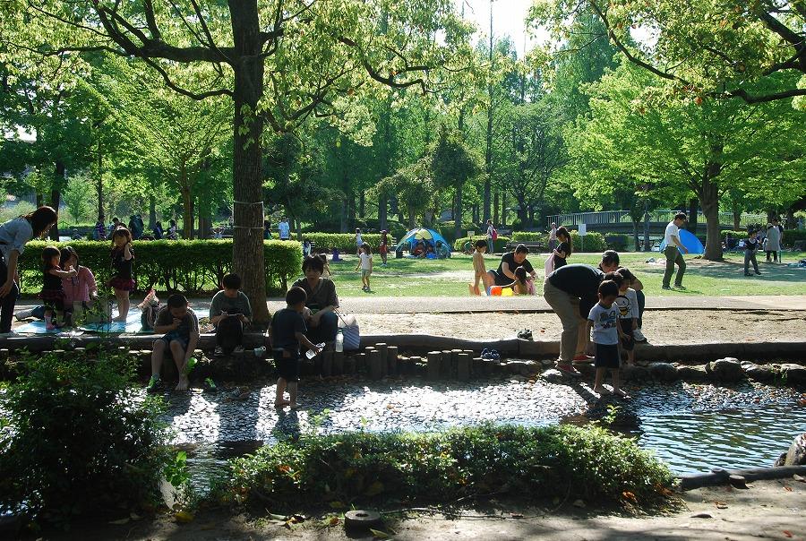 初夏の風景_c0187781_9124384.jpg