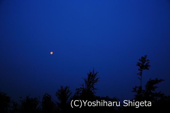 ~夜明けのMooN Light~_c0152400_14474227.jpg