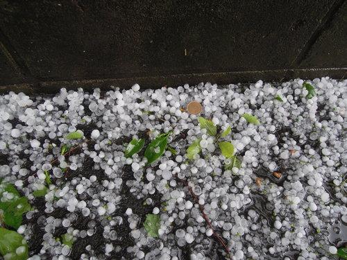雨雹!!_b0232005_2012779.jpg