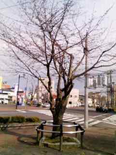 05/08学習会_f0202120_22442463.jpg