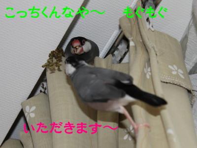 b0158061_024583.jpg