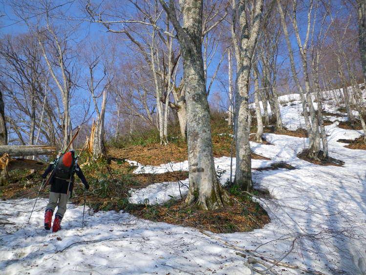 登り1/3は板を担いだ会津駒ヶ岳 ~ 2012年5月6日_f0170180_22174245.jpg