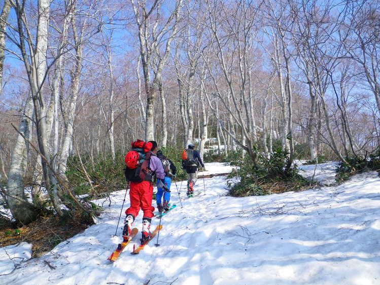 登り1/3は板を担いだ会津駒ヶ岳 ~ 2012年5月6日_f0170180_22191378.jpg
