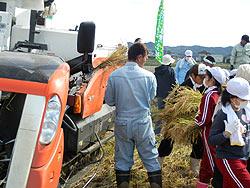 稲刈り体験(緑が丘小・北郷小)_d0247484_2215218.jpg