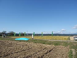 稲刈り体験(緑が丘小・北郷小)_d0247484_227146.jpg