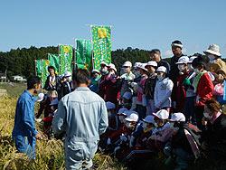 稲刈り体験(緑が丘小・北郷小)_d0247484_228725.jpg