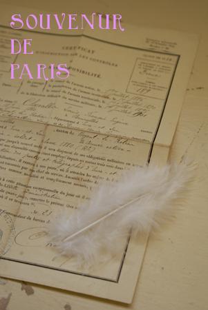 petit oiseau_b0132385_23779.jpg