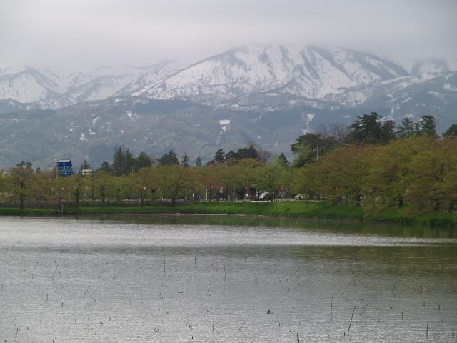 故郷の風景 高田公園のお堀_f0024992_8524434.jpg