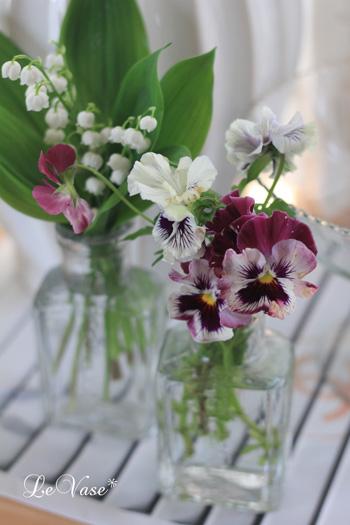 庭の花たち_e0158653_016978.jpg