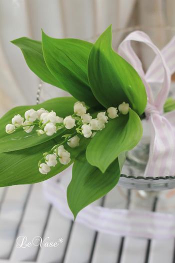 庭の花たち_e0158653_0281113.jpg