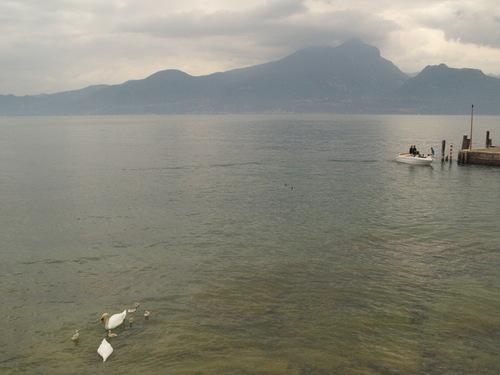 イタリアで一番大きな湖ーーガルダ湖へ!!_c0179785_612178.jpg
