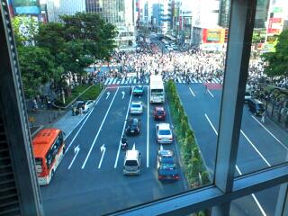 渋谷のポピー_d0092990_0234773.jpg