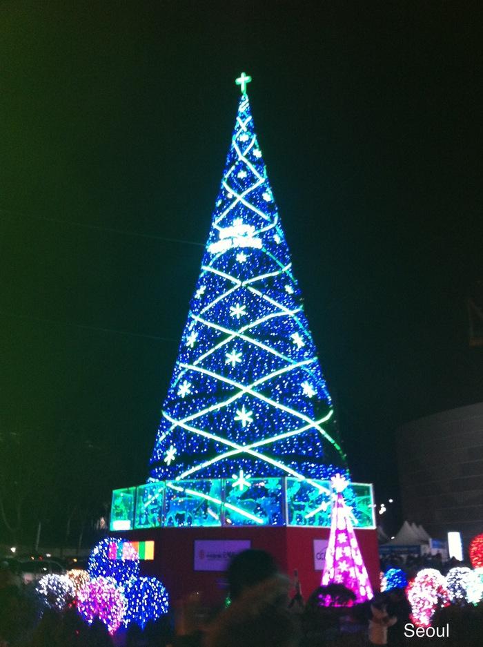 2011 12月 ソウル ⑩ 3日目夜 広蔵市場_f0062122_9491679.jpg