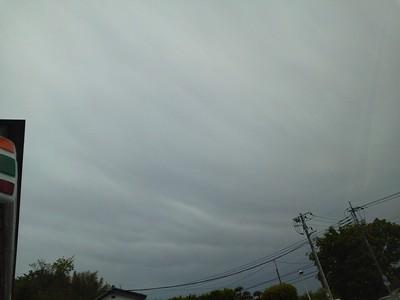 異常とも言える天候だが。_a0030528_2193723.jpg