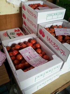 高知県まで『フルーツトマト』・・・視察へ行ってきました♪_b0077531_14102362.jpg